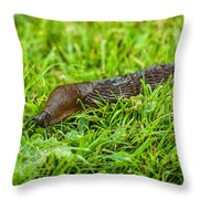 Rufous Garden Slug Throw Pillow