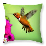 Rufus Hummingbird Throw Pillow