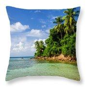 Rugged Lush Green Coastline Throw Pillow