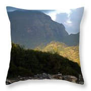 Rugged Majesty Throw Pillow