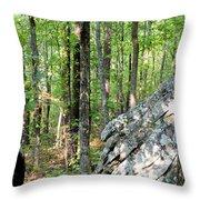 Rugged Terrain Of Boulder Field Throw Pillow