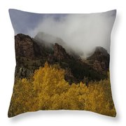 Ruggedness Unveiled Throw Pillow
