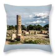 Ruins Of Paestum Throw Pillow