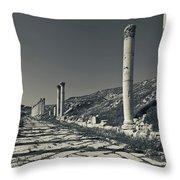 Ruins Of Roman-era Columns Throw Pillow