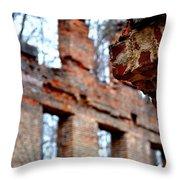 Ruins Of Sweetwater Manufacturing Company Throw Pillow