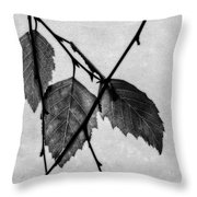 Rule Of Three Throw Pillow