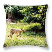 Run Cheetah Run 0 To 60 In 3 Seconds Throw Pillow
