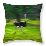 Run Ostrich Throw Pillow