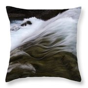 Run River Run 1 Throw Pillow