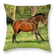Run Run Throw Pillow