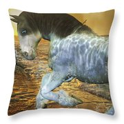 Run With Me Sunrise Throw Pillow by Betsy Knapp