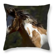 Runaway Horse   #4976 Throw Pillow