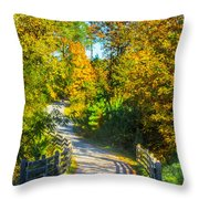 Runner's Path In Autumn Throw Pillow