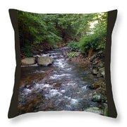 Running Brook Throw Pillow