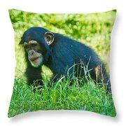 Running Chimp Throw Pillow