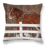 Running Clydesdale Throw Pillow