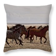 Running For The Fun Of It   #0958 Throw Pillow