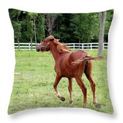Running In The Breeze Throw Pillow