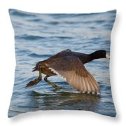Running On Water Series 6 Throw Pillow