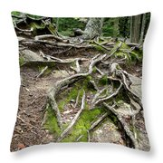 Running Out Of Ground Throw Pillow
