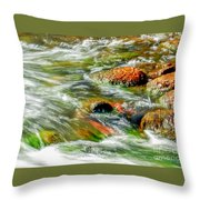 Running River Throw Pillow