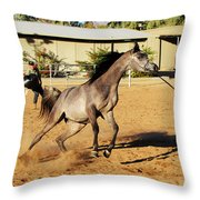 Running Roan Throw Pillow