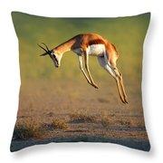 Running Springbok Jumping High Throw Pillow
