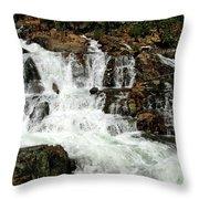 Running Water Glen Alpine Falls Throw Pillow
