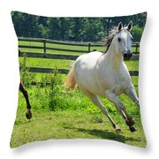 Running Wild Throw Pillow by Paul Ward