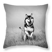 Running Wolf Throw Pillow