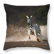 Running Zebra Throw Pillow by Johan Swanepoel
