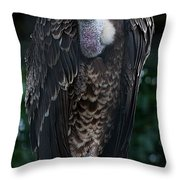 Ruppel's Griffon Throw Pillow