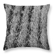 Rural America Black And White Throw Pillow