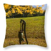 Rural Connecticut Autumn Throw Pillow