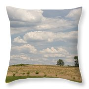 Rural Field Landscape In Maryland Throw Pillow