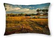 Rural Georgia  Throw Pillow
