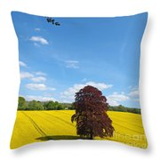 Rural Hampshire 2 Throw Pillow
