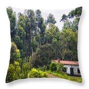 Rural House Throw Pillow