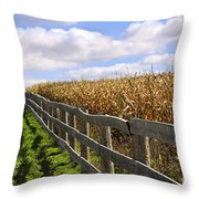 Rural Landscape With Fence Throw Pillow
