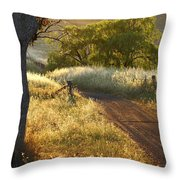 Rural Road 2am-009691 Throw Pillow