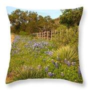 Rural Road 2am-110239 Throw Pillow