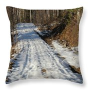 Rural Road In Eary Spring. Throw Pillow