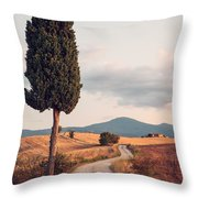 Rural Road With Cypress Tree In Tuscany Italy Throw Pillow by Matteo Colombo