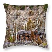 Rural Rustic Rundown Rocky Mountain Cabin Throw Pillow