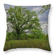 Rural Trees II Throw Pillow