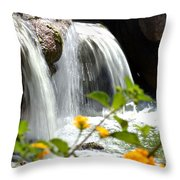 Rushing Along Throw Pillow