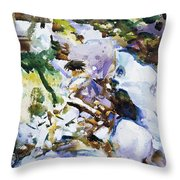 Rushing Brook Throw Pillow