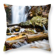 Rushing Falls Throw Pillow by Parker Cunningham