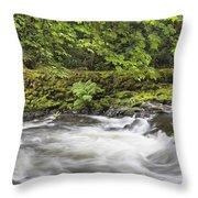 Rushing Water At Cedar Creek Washington State Throw Pillow