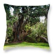 Ruskin Oak - Ocean Springs Throw Pillow